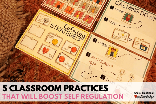 5 Classroom Practice to Boost Self Regulation